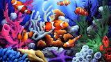 Clown Fish Heaven