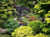 Japanese Tea Garden Golden Gate Park San Francisco California