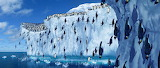 Antarctica. Penguins