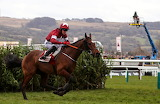 Tiger Roll and Keith Donoghue 2018 Cross Country