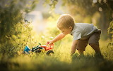 Baby-boy-playing-with-toy-car-in-garden-on-a-sunny-summer-day