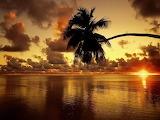 Cook Island Sunset
