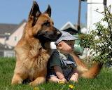 El niño y su mascota
