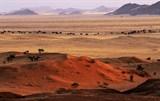 Namib sand dunes no 2 48470020 thumb