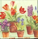 Fleurs serviette papier