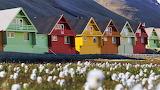 Svalbard summer - Norway