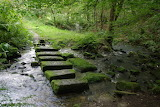 Red Beck stepping stones