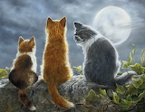 Cat Family and Full Moon by Shirley Deaville