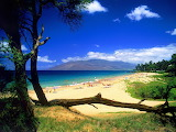 Kihei_beach_desktop_wallpaper_14242