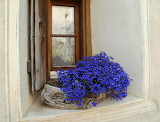 On The Sill
