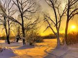 December Snow...