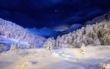 Nature landscapes mountains trees forests winter snow seasons br