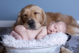 Sleeping child and dog