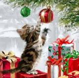 Kitten at Christmas