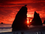 Sea stacks knife a blood red sky-normal