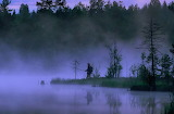 Fishing At Dawn In Sweden