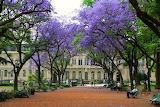 Buenos Aires Argentine