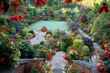 beautiful flower place in the garden