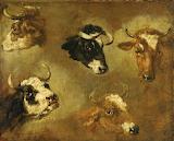 Studies of Cows' Heads by Nicolaes Pietersz Berchem