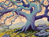 magic oak, Maeve Croghan