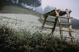 Struttura in legno -campagna