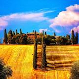 ☼ Sunny Tuscanny...