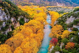 Aerial view, old stone bridge, river, forest in autumn, Shutters