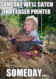 Funny-cats-cute-meme-kids-lase-6845