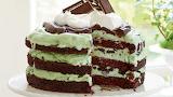 Mint Chocolate Ice Cream Cake