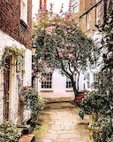 Hampstead mews