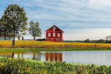 Ohio-red-house-in-front-of-the-pond