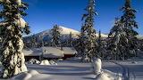 Winter Wonderland - Royaltyfree from Pxfuel.com