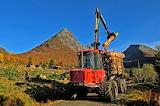 Timberload Norway