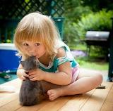 A little girl and a kitten