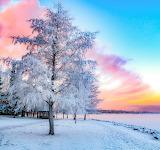 Beautiful Lapland @ Twitter.com...
