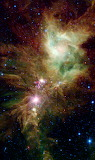 "Space tumblr nasa-daily ""Stellar Snowflake Cluster"""