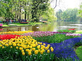 Spring in the Netherlands