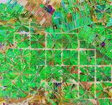 "Space ESA ""Deforestation in Bolivia"" ""Copernicus Sentinel 2"""