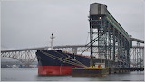 Freighter Grain Port October 20153152