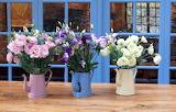 Flowers, watering cans, window