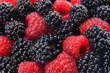 Raspberries-and-blackberries