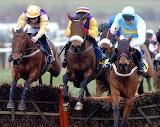 Brave Inca, Harchibald & Hardy Eustace 2005 Champion Hurdle