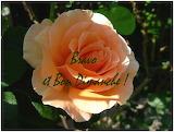 Bon Dimanche ! - online jigsaw puzzle - 35 pieces