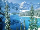Zimní krajina - online jigsaw puzzle - 117 pieces