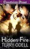 HiddenFire - online jigsaw puzzle - 40 pieces